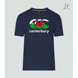 Camiseta junior Gales Seis Naciones navy